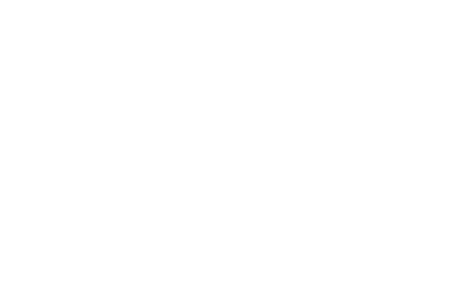 Mikoyan Gurevitch MiG-21 diagrams